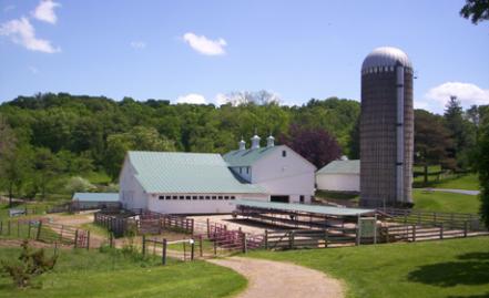 Dairy Barn Grooving